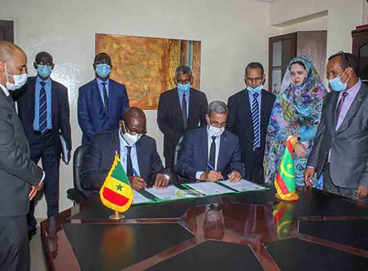 Accord entre la Mauritanie et le Sénégal pour l'exportation de moutons