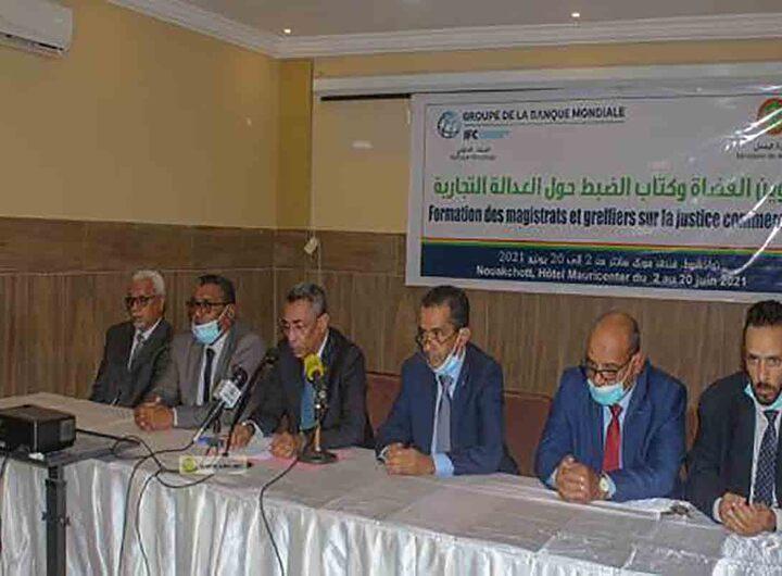Les récentes réformes du droit commercial en Mauritanie