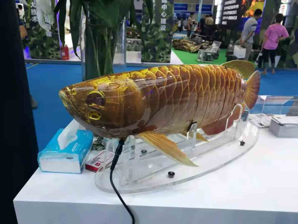 Pour espionner les mers, la Chine a conçu ce drone-poisson ultra-réaliste